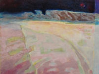 Spanje woestijn 40x50